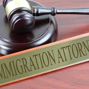 Main Reasons Of Any Immigration Law